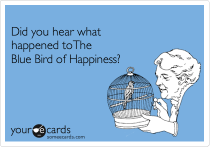 Did you hear what  happened toThe  Blue Bird of Happiness?