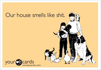 Our house smells like shit  | Confession Ecard
