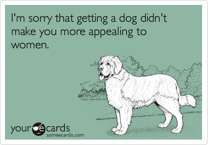 I'm sorry that getting a dog didn't make you more appealing to women.
