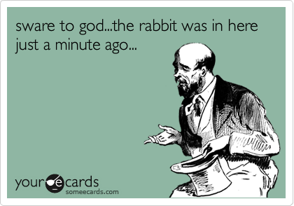 sware to god...the rabbit was in here just a minute ago...