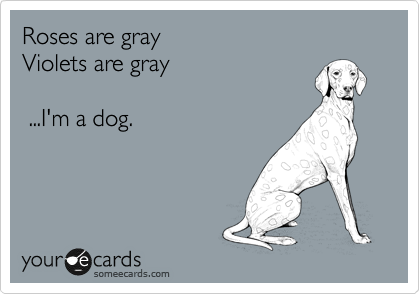 Roses are gray  Violets are gray     ...I'm a dog.