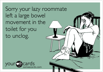 Sorry your lazy roommate left a large bowel movement in the toilet for you to unclog.