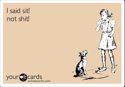 I said sit! not shit!