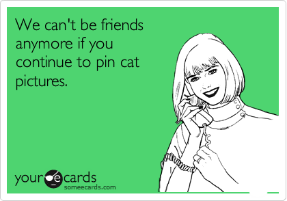 We can't be friends anymore if you continue to pin cat pictures.