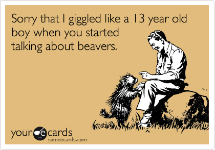 Sorry that I giggled like a 13 year old boy when you started talking about beavers.