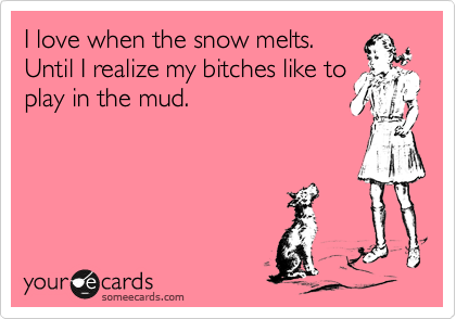 I love when the snow melts.  Until I realize my bitches like to play in the mud.