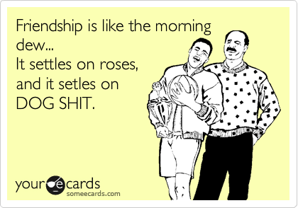 Friendship is like the morning dew... It settles on roses, and it setles on DOG SHIT.