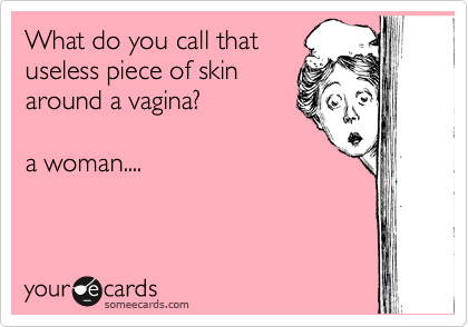 What do you call that useless piece of skin around a vagina?    a woman....