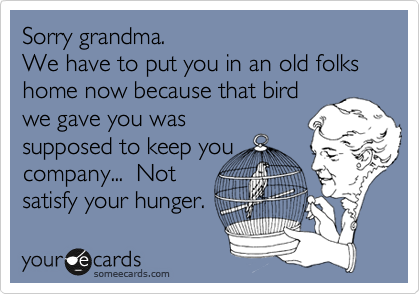 Sorry grandma. We have to put you in an old folks home now because that bird we gave you was supposed to keep you company...  Not satisfy your hunger.