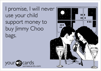 I promise, I will never use your child support money to  buy Jimmy Choo  bags.