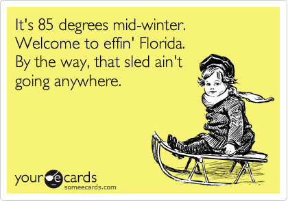 It's 85 degrees mid-winter. Welcome to effin' Florida. By the way, that sled ain't going anywhere.