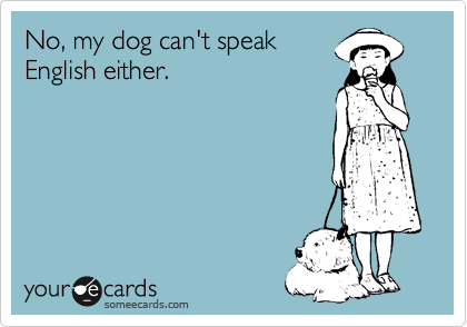 No, my dog can't speak English either.