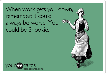 When work gets you down, remember: it could always be worse. You could be Snookie.