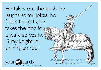 He takes out the trash, he laughs at my jokes, he feeds the cats, he takes the dog for a walk, so yes he IS my knight in   shining armour.