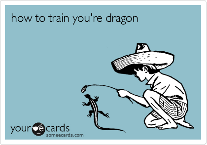 how to train you're dragon