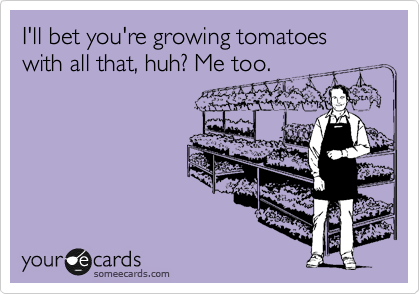 I'll bet you're growing tomatoes with all that, huh? Me too.