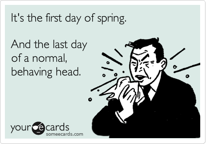 It's the first day of spring.  And the last day  of a normal,  behaving head.