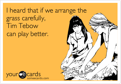 I heard that if we arrange the grass carefully, Tim Tebow can play better.