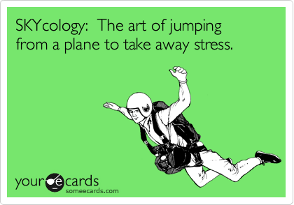 SKYcology:  The art of jumping from a plane to take away stress.