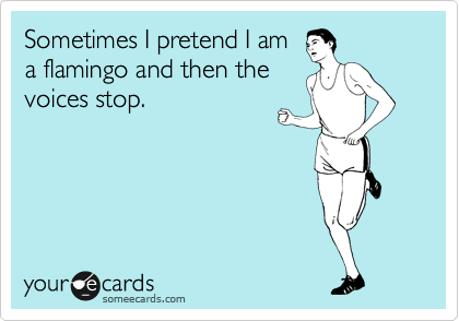 Sometimes I pretend I am a flamingo and then the voices stop.