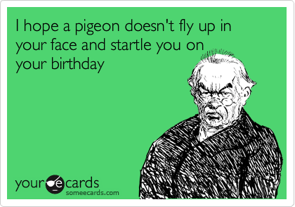 I hope a pigeon doesn't fly up in your face and startle you on your birthday