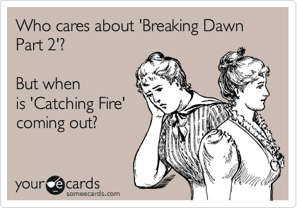 Who cares about 'Breaking Dawn Part 2'?   But when is 'Catching Fire' coming out?
