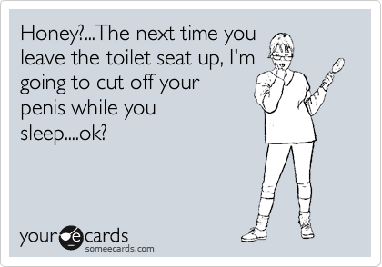 Honey?...The next time you leave the toilet seat up, I'm going to cut off your penis while you sleep....ok?
