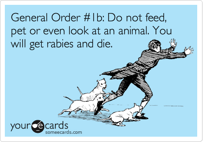 General Order %231b: Do not feed, pet or even look at an animal. You will get rabies and die.