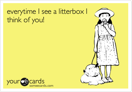 everytime I see a litterbox I think of you!