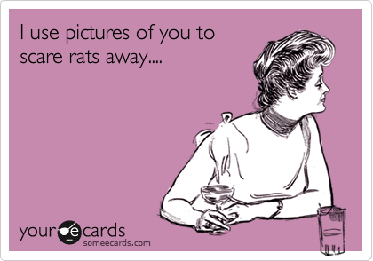 I use pictures of you to scare rats away....