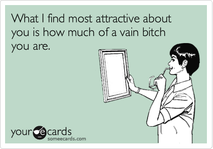 What I find most attractive about you is how much of a vain bitch you are.