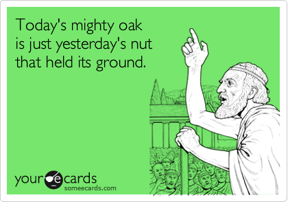 Today's mighty oak is just yesterday's nut that held its ground.