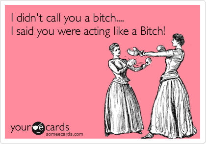 I didn't call you a bitch.... I said you were acting like a Bitch!