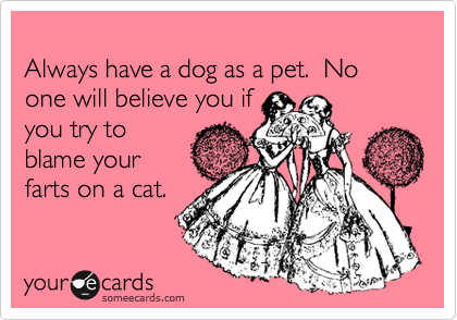 Always have a dog as a pet.  No one will believe you if you try to blame your farts on a cat.