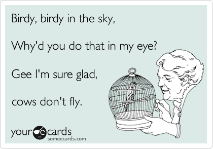 Birdy, birdy in the sky,  Why'd you do that in my eye?  Gee I'm sure glad,  cows don't fly.