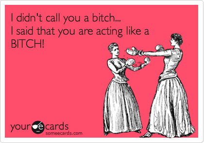 I didn't call you a bitch... I said that you are acting like a BITCH!