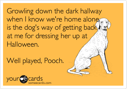 Growling down the dark hallway when I know we're home alone  is the dog's way of getting back at me for dressing her up at Halloween.  Well played, Pooch.
