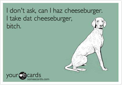 I don't ask, can I haz cheeseburger.  I take dat cheeseburger, bitch.