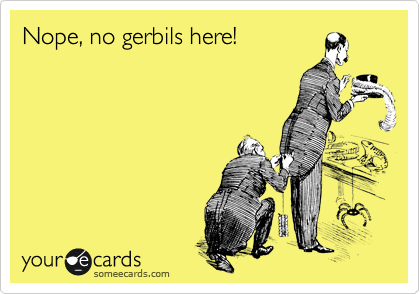 Nope, no gerbils here!