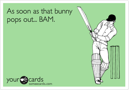 As soon as that bunny pops out... BAM.