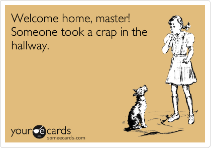 Welcome home, master! Someone took a crap in the hallway.