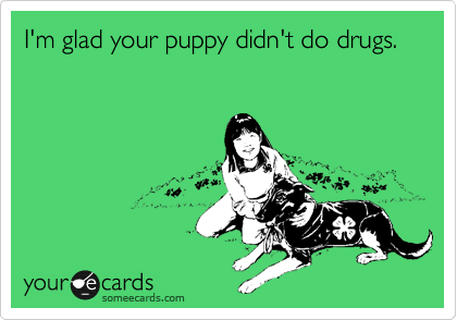I'm glad your puppy didn't do drugs.