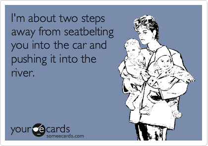 I'm about two steps away from seatbelting you into the car and pushing it into the river.