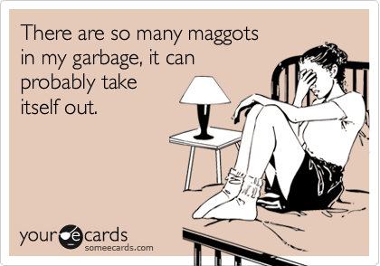 There are so many maggots  in my garbage, it can probably take itself out.