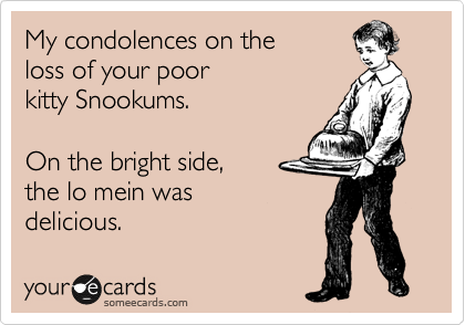 My condolences on the  loss of your poor  kitty Snookums.  On the bright side, the lo mein was  delicious.