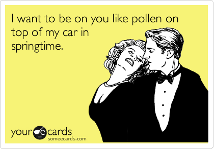 I want to be on you like pollen on top of my car in springtime.