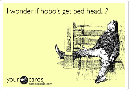 I wonder if hobo's get bed head....?