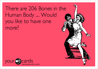 There are 206 Bones in the Human Body .... Would you like to have one more?