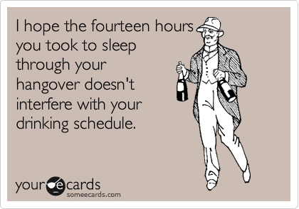 I hope the fourteen hours you took to sleep through your hangover doesn't interfere with your drinking schedule.