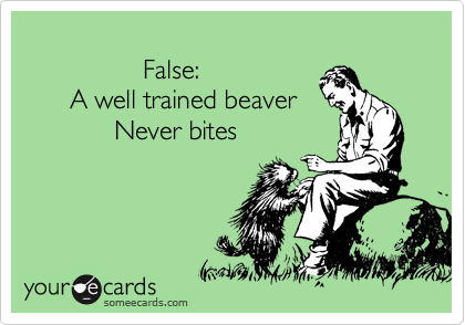 False:       A well trained beaver             Never bites